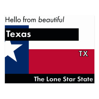 Texas The Lone Star State Postcard