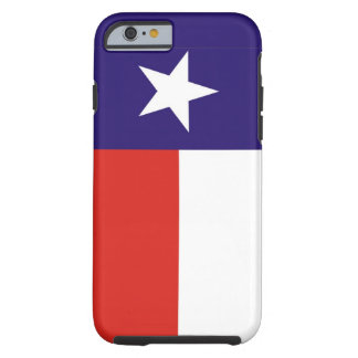 texas usa state flag case united america