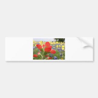 Texas Wildflowers Bumper Stickers