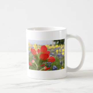 Texas Wildflowers Mugs