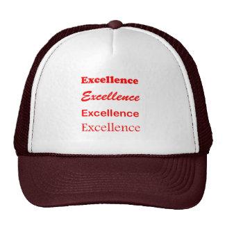 Text EXCELLENCE Motivation Leadership Coach Mentor Trucker Hat