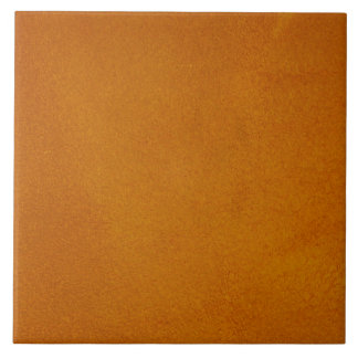 Textured Burnt Orange Tile