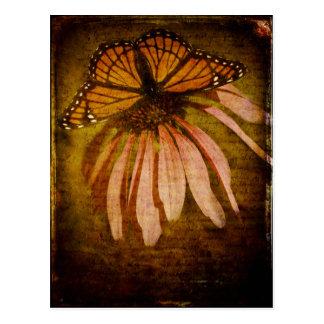 Textured Butterfly Postcard