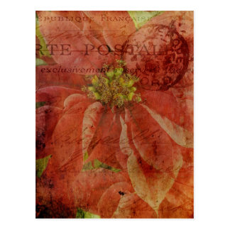 Textured Christmas Poinsettia with Postmark Postcard