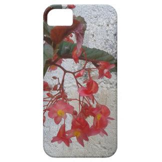 Textures iPhone 5 Case
