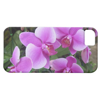 Thai Orchids Case For The iPhone 5