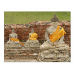 Thailand, Ayutthaya. Statues of sitting buddhas Postcards