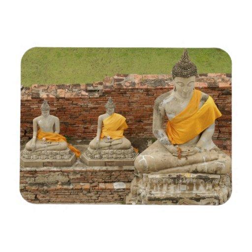 Thailand, Ayutthaya. Statues of sitting buddhas Vinyl Magnets