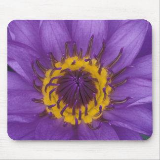 Thailand, Bangkok, Purple and yellow lotus Mouse Mat