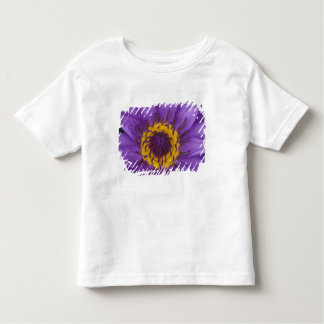 Thailand, Bangkok, Purple and yellow lotus Toddler T-Shirt