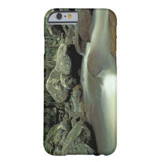 Thailand, Kohsamui Island, Rainforest landscape. Barely There iPhone 6 Case