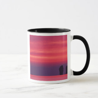 Thailand, Phang Nga Bay. Pink sky reflected in Mug