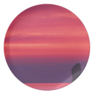 Thailand, Phang Nga Bay. Pink sky reflected in Plate