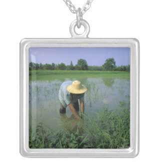 Thailand, Sukhothai. Rice farmer. MR. Silver Plated Necklace