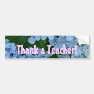 Thank a Teacher! bumper stickers Teach Teaching