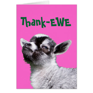 Thank-EWE Miniature Goat Card