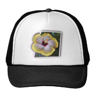Thank you aloha mahalo designs hat