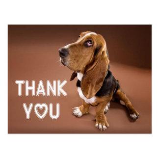 Thank You Basset Hound Puppy Dog Brown Postcard