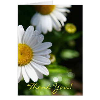Thank You Blank, Daisy Note Card