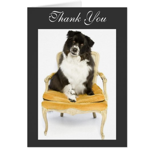 Thank You Border Collie Card