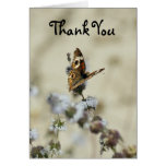 Thank You, Butterfly Card