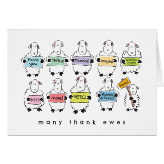 Thank you card - Cute little sheepies