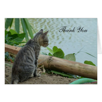 Thank You Card - Little Kitten by the Water