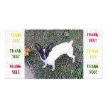 Thank You Card Photo Greeting Card