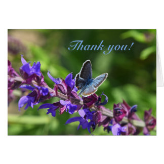 Thank You Card with butterfly on purple salvia