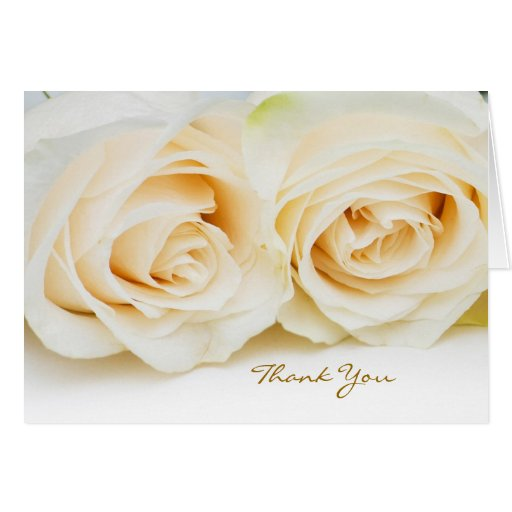 Thank you card with white-cream  roses.