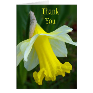 Thank You Card - Yellow Daffodil