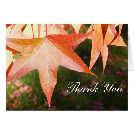 Thank You Cards - Autumn Leaves