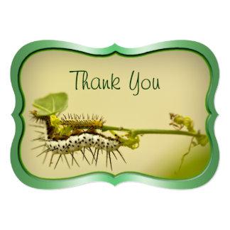 """""""Thank You"""" - Caterpillar Closeup Nature Photo . 5"""" X 7"""" Invitation Card"""