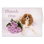 Thank You Cavalier King Charles Spaniel Roses Greeting Card