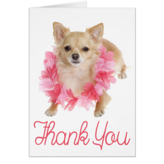 Thank You Chihuahua Puppy Dog Blank Notecard Note Card