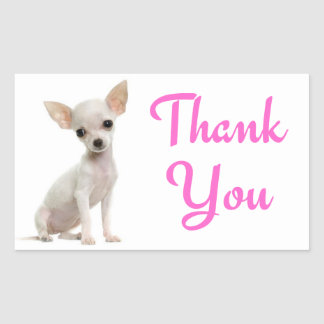 Thank You Chihuahua Puppy Dog Pink Stickers
