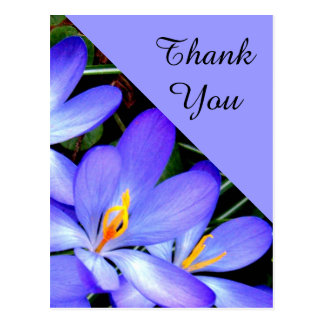 Thank You , Flowers Postcard