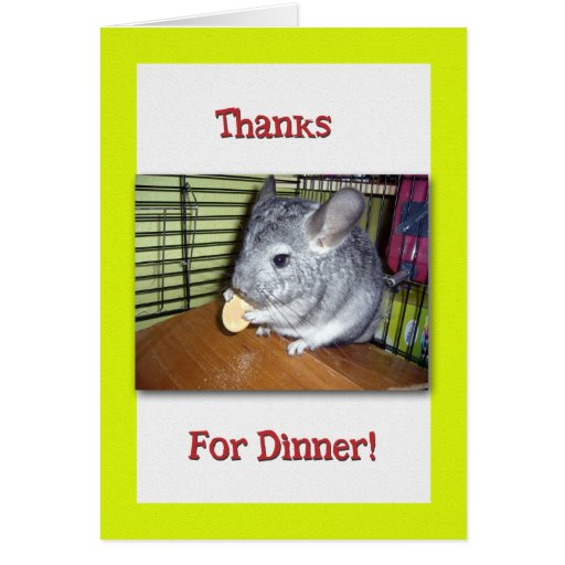 Thank You For Dinner Chinchilla Eating Cards