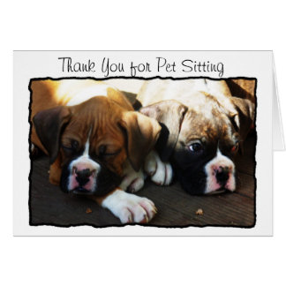 Thank You for Pet Sitting Boxer greeting card