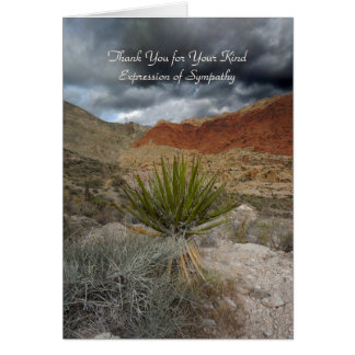 Thank You for Sympathy, Mountain Storm with Yucca Note Card