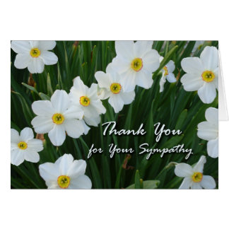 Thank You for Sympathy, Narcissus Flowers Greeting Card