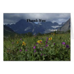 Thank You For Sympathy Note Mountain Wildflowers Note Card