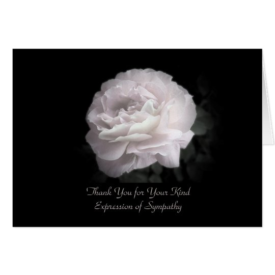 Thank You for Sympathy, One Pale Pink Rose