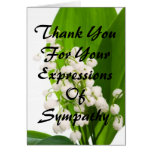 Thank You For Your Expressions of Sympathy Note Card