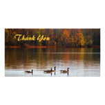 Thank You Geese Photo Card