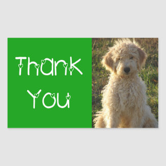 Thank You Goldendoodle Puppy Dog Sticker / Label