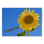 Thank You greeting card Karte