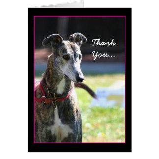 Thank You Greyhound greeting card