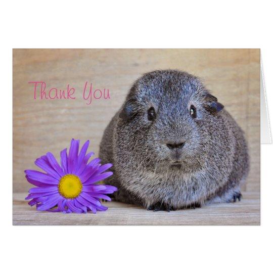 Thank You Guinea Pig Card Genera Daisy