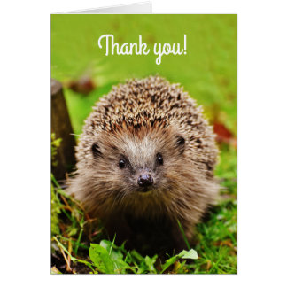 """""""Thank you!"""" Little Hedgehog in the Forest Greeting Card"""